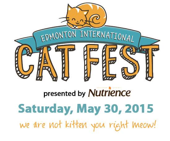 Cat Festival
