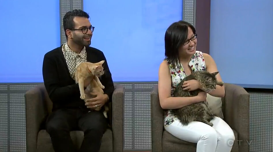 Omar Mouallem and Linda Hoang on CTV Edmonton