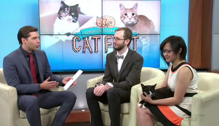 Cat Festival CTVML