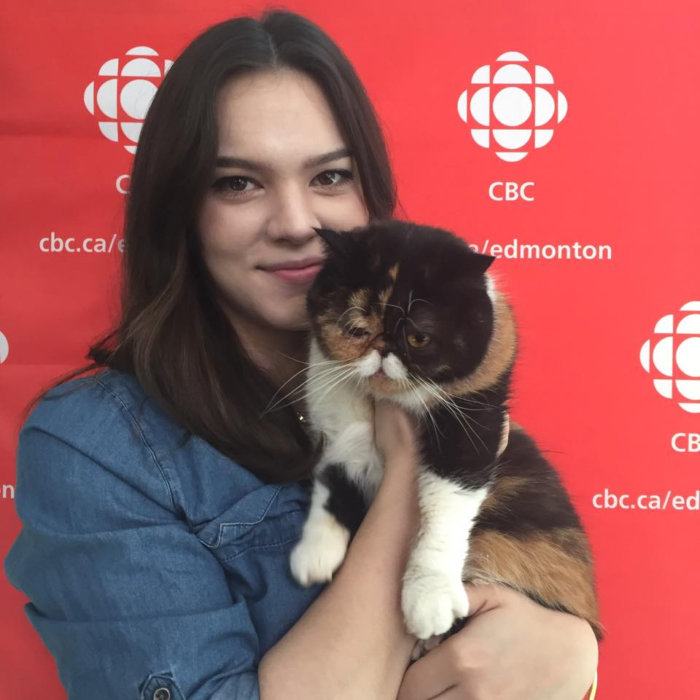 CBC Edmonton Pudge the Cat Cat Festival