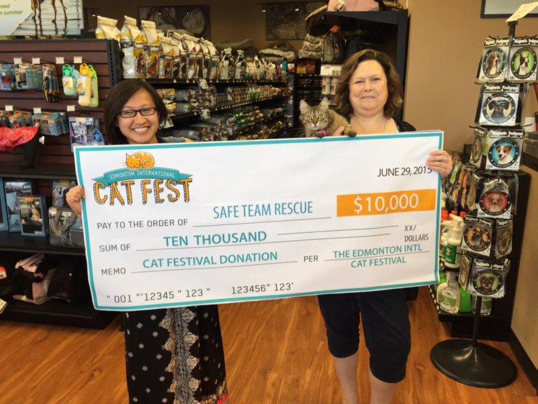 Cat Fest Cheque 1