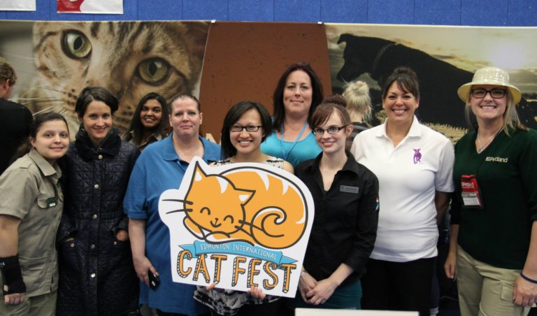 Edmonton International Cat Festival 16