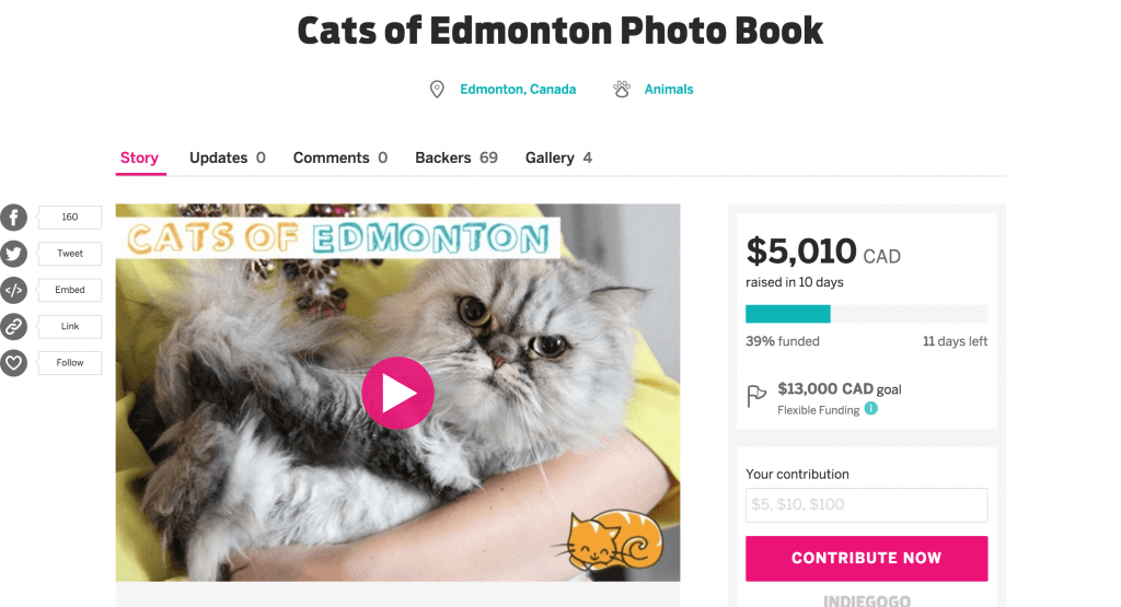 Cats of Edmonton Indiegogo Crowdfunding