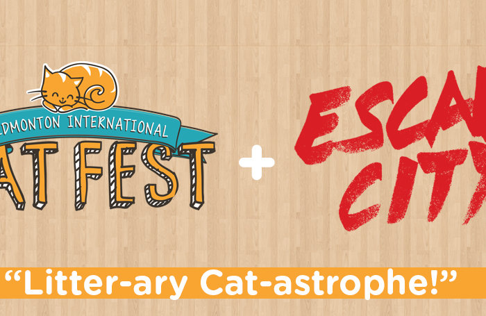 Cat Fest Escape City