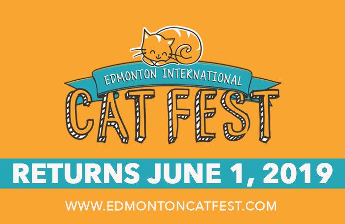 CAT FEST 2019