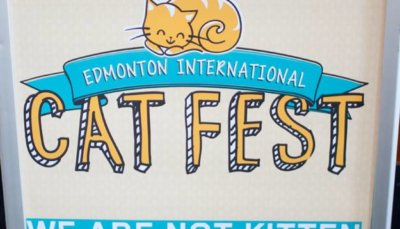 2014 Edmonton International Cat Festival 8