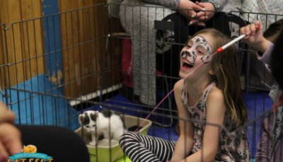 2016 Edmonton International Cat Festival 15