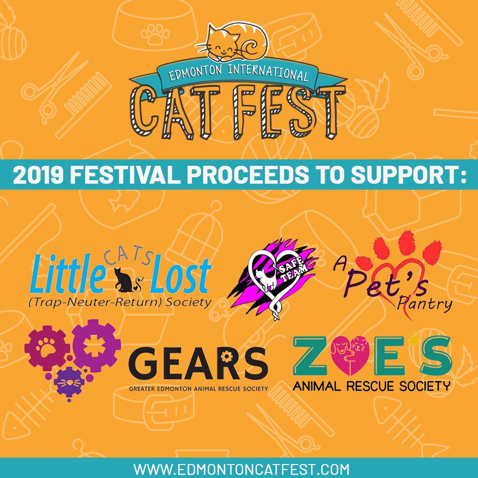 2019 Cat Festival Proceeds