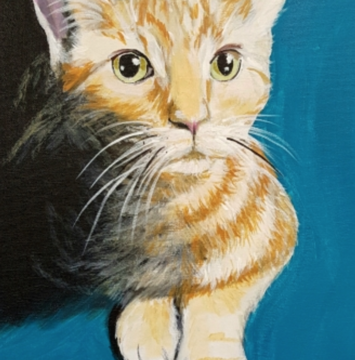 Paint Your Cat YAYMaker