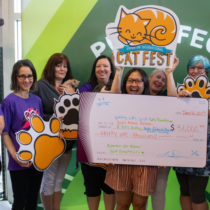 Cat Festival 2019 Cheque Presentation