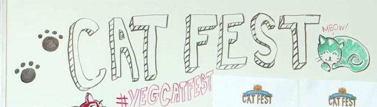 Edmonton Cat Festival