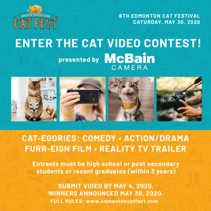 2020 Edmonton Cat Video Contest