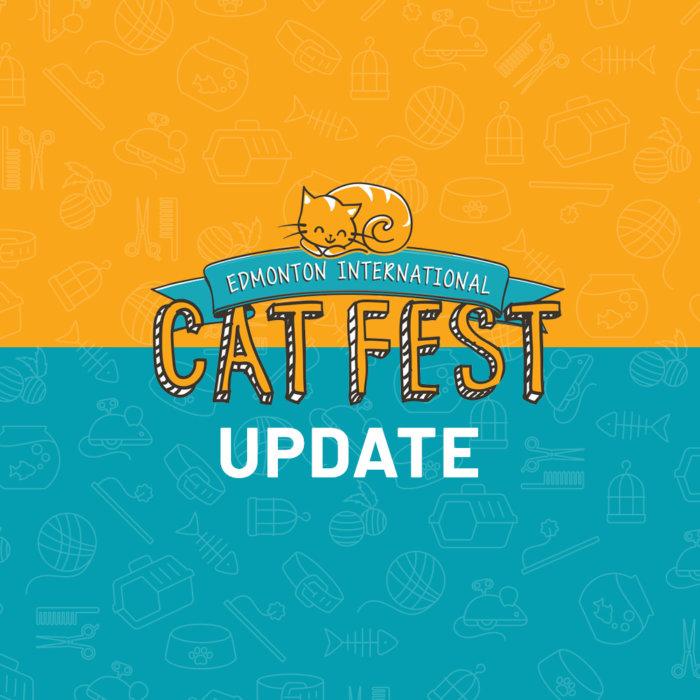 COVID19 Update Cat Festival