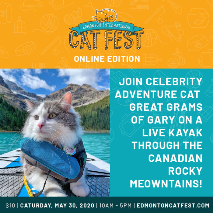 Cat Fest Online Edition Gary Promo 2