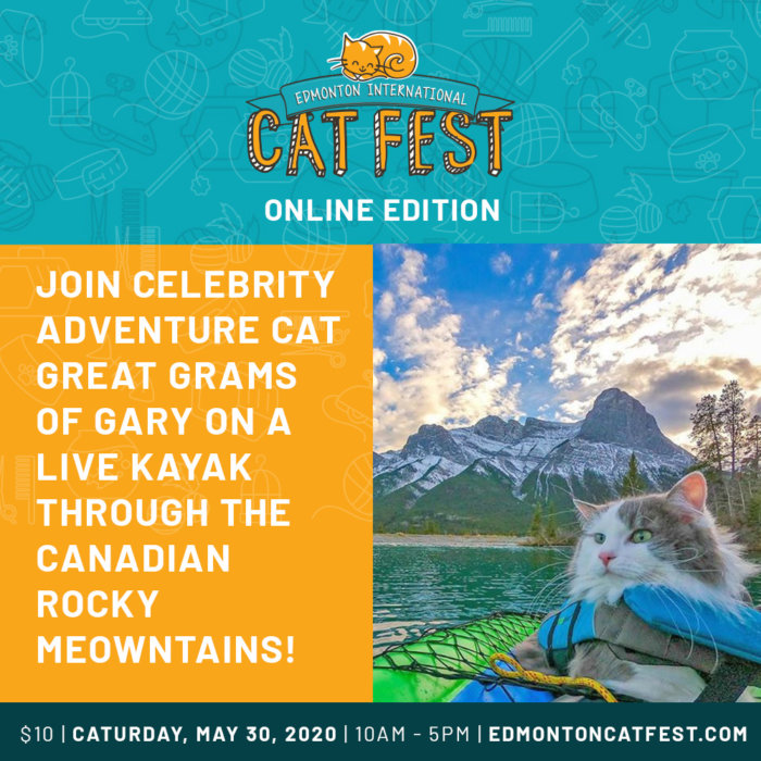 Cat Fest Online Edition Gary Promo