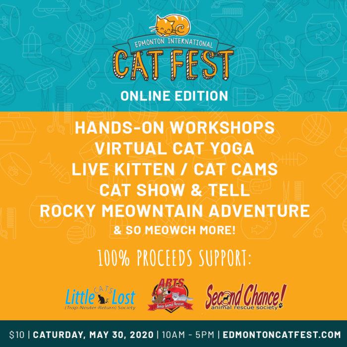 Cat Fest Online Edition Promo 14