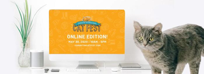 Cat Fest Online Edition Promo 16