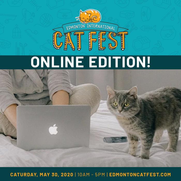 Cat Fest Online Edition Promo 2