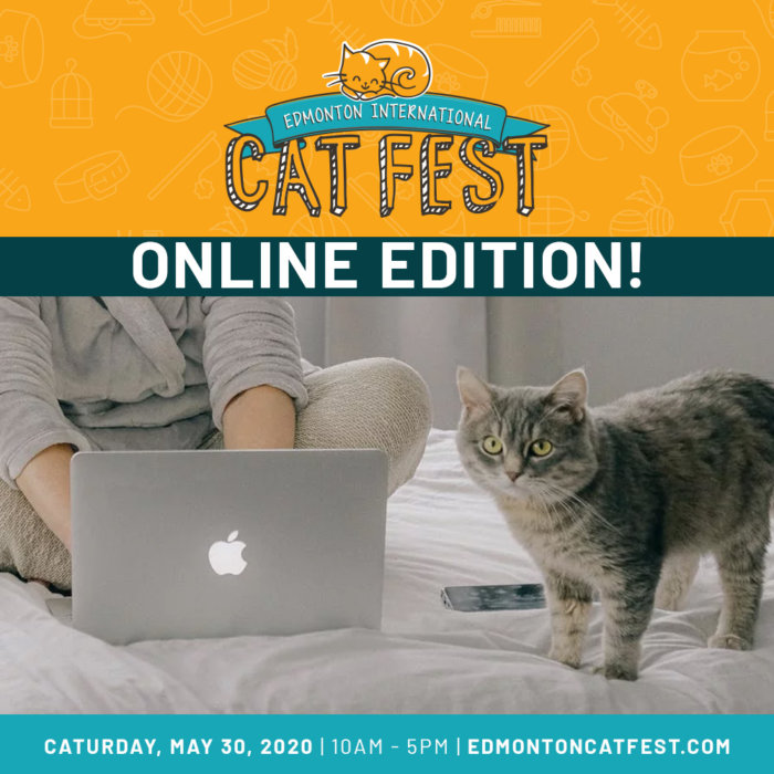 Cat Fest Online Edition Promo 3
