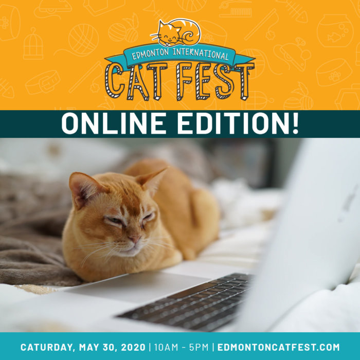Cat Fest Online Edition Promo 4