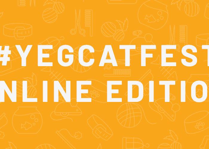 Cat Fest online blog banner
