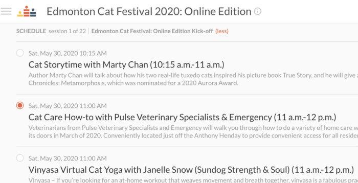 Cat Festival Livestream Schedule View