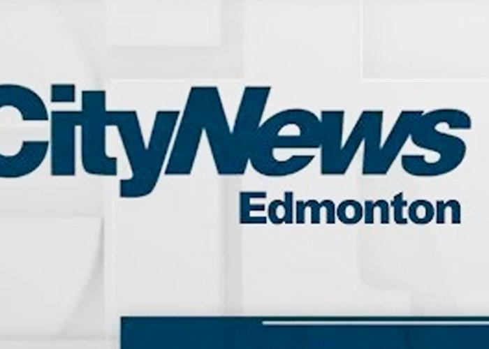 CityNews Edmonton Cat Festival