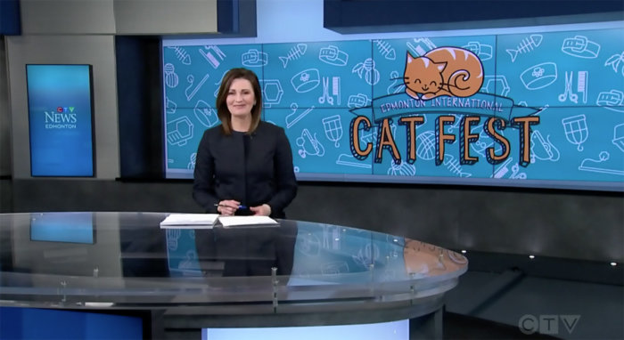 Edmonton International Cat Festival CTV Edmonton 1