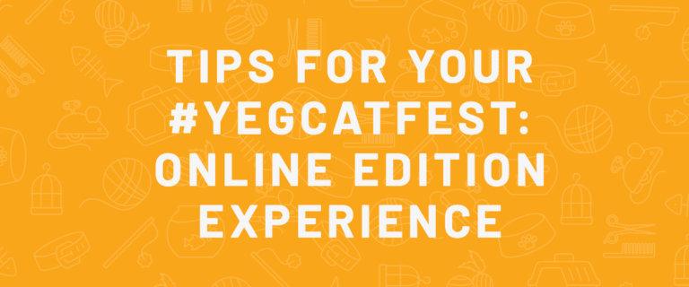 TIPS virtual edmonton cat festival