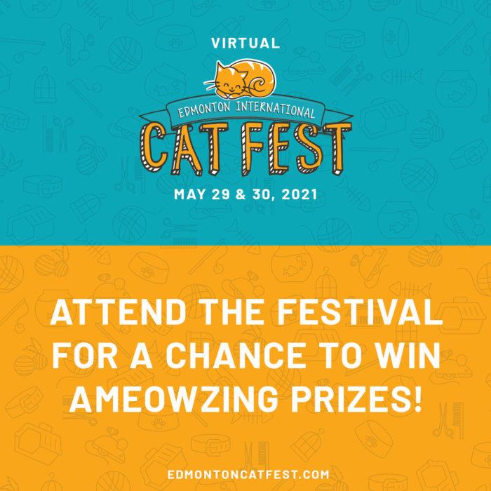 2021 Cat FEST PRIZES