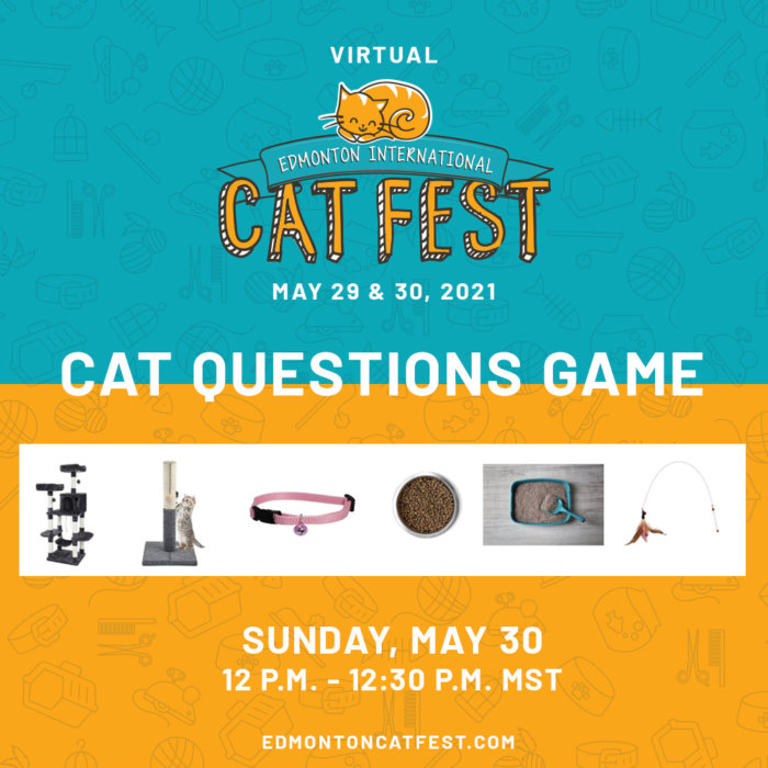 2021 Cat Fest Schedule Cat Questions Game