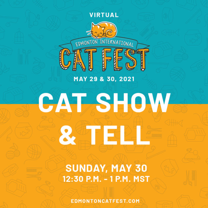 2021 Cat Fest Schedule Cat Show and Tell