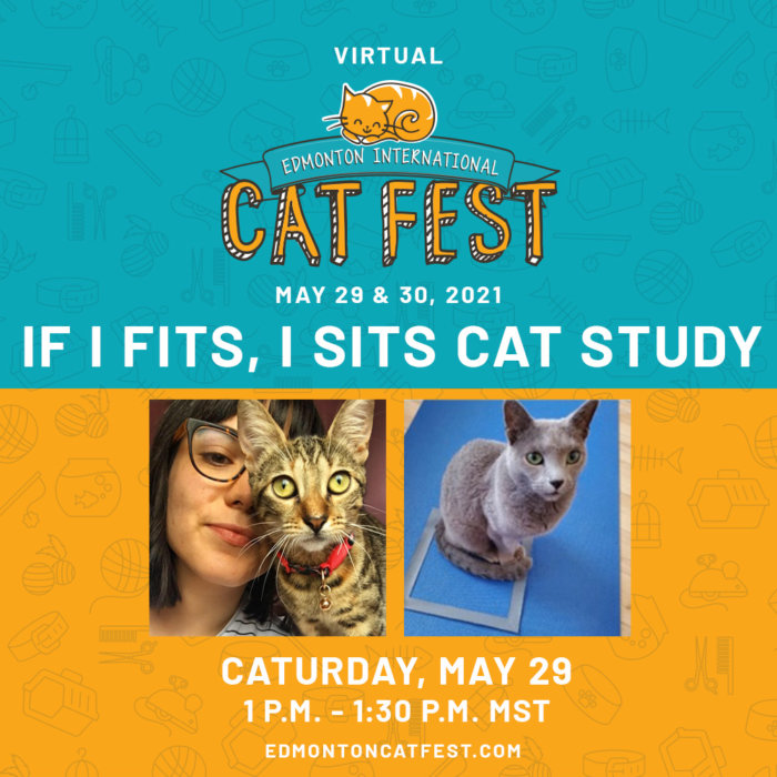 2021 Cat Fest Schedule Cat Study
