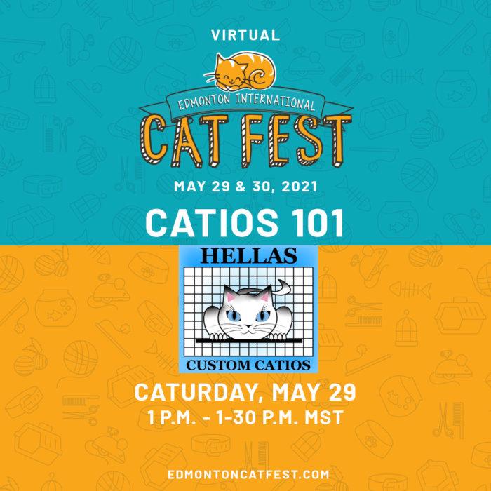 2021 Cat Fest Schedule Hellas Catios