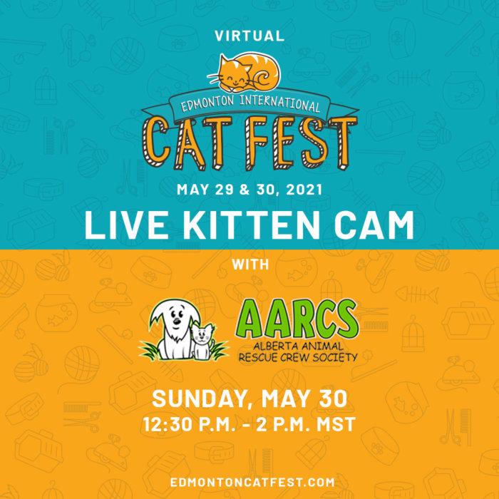 2021 Cat Fest Schedule Live Kitten Cam AARCS