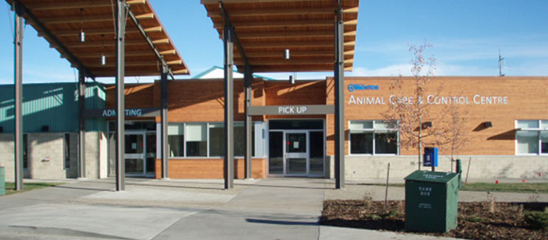 Animal Care and Control Edmonton