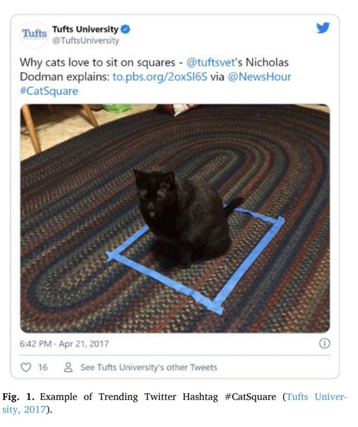 If I Fits I Sits Cat Study Research Screenshot 3