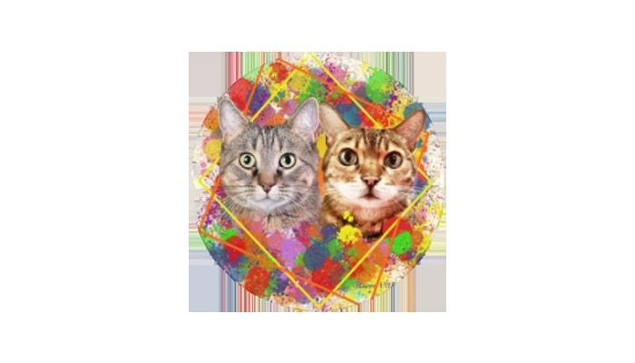 Kitty Mojito Lynx