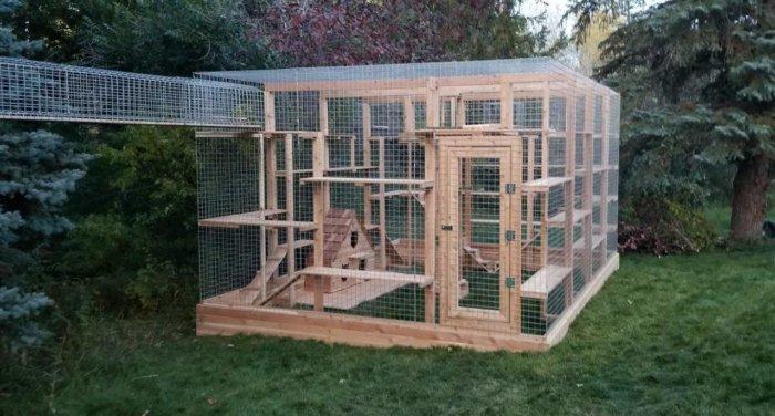 amazing catio elaborate viral cat enclosure cat run 4