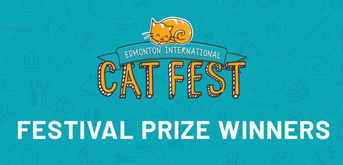 2021 Cat Fest prize winners