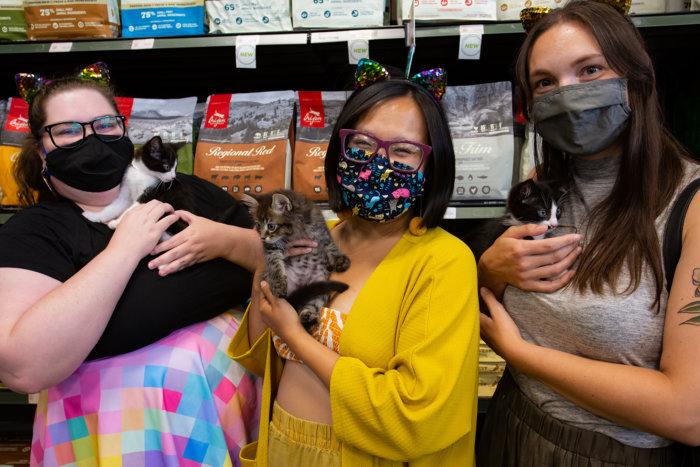 Edmonton Cat Festival Donation Local Rescues 2021 3