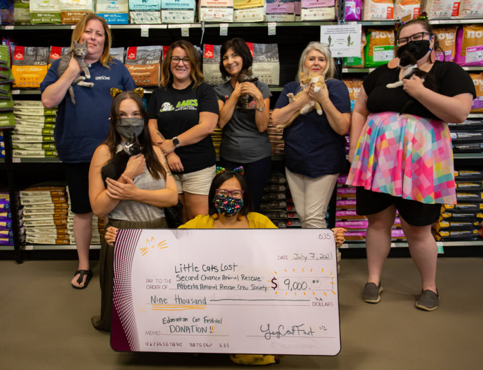 Edmonton Cat Festival Donation Local Rescues 2021 4